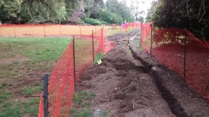 Volunteer Park Irrigation Project