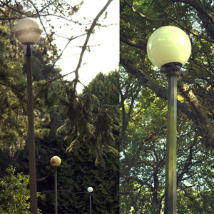 Volunteer Park Lamp Posts
