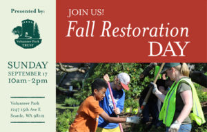 Fall Restoration Day in Volunteer Park