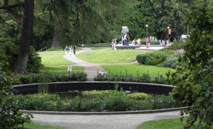 Volunteer Park Landscaping