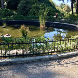 Lily Pond Railings
